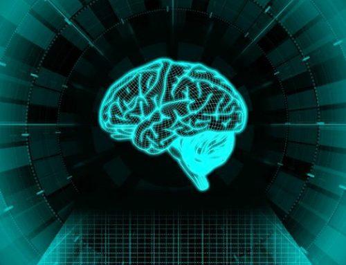 Interdisciplinary Structure of Neuroscience